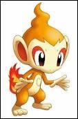 De quel Pokémon est-il l'évolution ?
