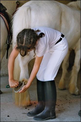 Quand tu cures les sabots d'un cheval, il faut absolument que :