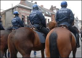 Sur quoi peut-on 'être très à cheval' ?