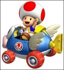 Un petit champignon dans une voiture c'est :