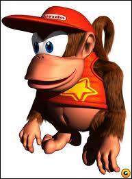 Un petit singe très agile :