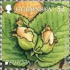 Quel est ce petit fruit souvent mélangé avec le chocolat visible sur ce timbre de Guernesey ?