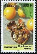 Quel est ce fruit visible sur ce timbre du Laos ?