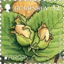 Visite du monde des fruits par les timbres (2)