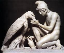 Zeus , métamorphosé en aigle, a enlevé un prince qui était le plus bel adolescent vivant sur la terre. Comment s'appelait l'amour pédérastique de Zeus ?