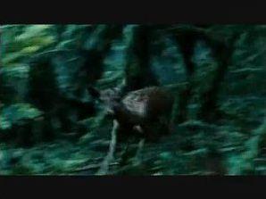 Connaissez-vous assez Twilight 1 pour répondre ?
