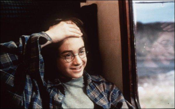 La cicatrice d'Harry Potter était dessinée par des maquilleurs. Combien de fois a-t-elle été refaite au total pour les 8 films ?