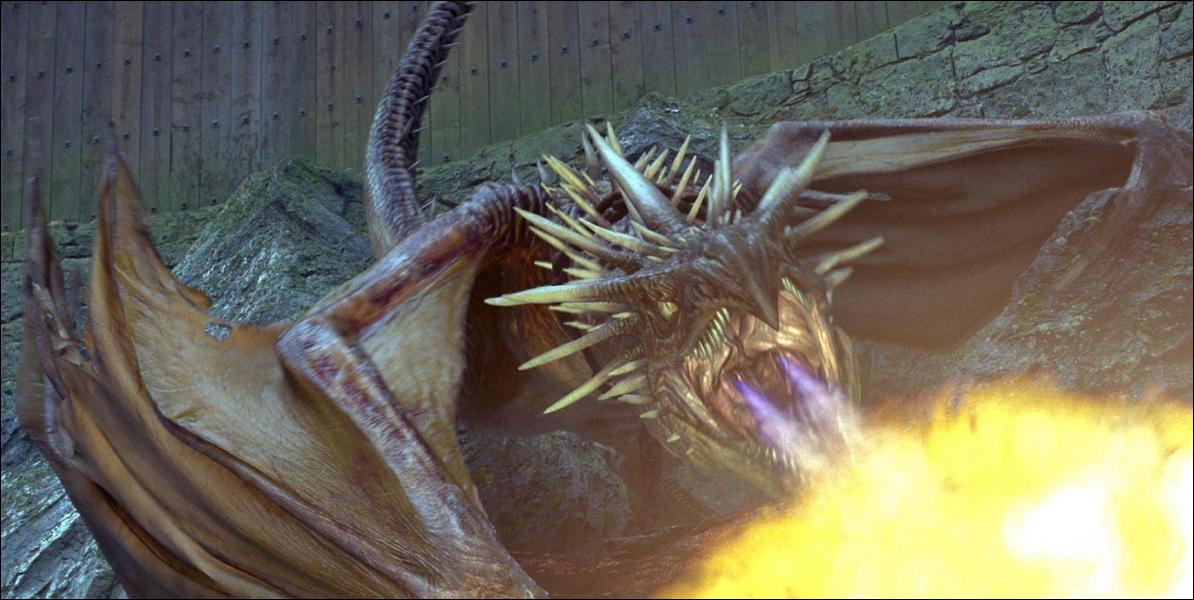 Combien existe-t-il d'espèces de dragons ?