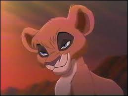 Comment s'appelle la soeur du jeune lionceau qu'aime la fille de Simba ?