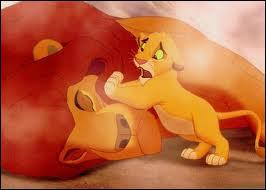 Est ce que Simba meurt dans le Roi Lion 2 ?