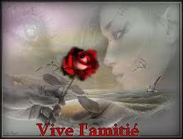 ''Toi mon amour, mon AMI /Quand je rêve c'est de toi / Mon amour, mon AMI / Quand je chante c'est pour toi / Mon amour, mon AMI / Je ne peux vivre sans toi / Mon amour, mon AMI / Et je ne sais pas pourquoi''