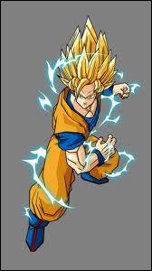 En quelle transformation est Goku ?