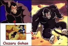 Dans quels épisodes se transforment Gorille Vegeta , Gorille Sangohan ?
