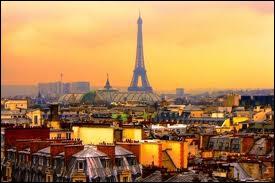 Paris, la Ville Lumière, compte 141 musées, 1449 hôtels, 455 parcs et jardins et plus de 17 500 boutiques et accueille 6 millions de visiteurs annuels pour monter sur la Tour Eiffel.