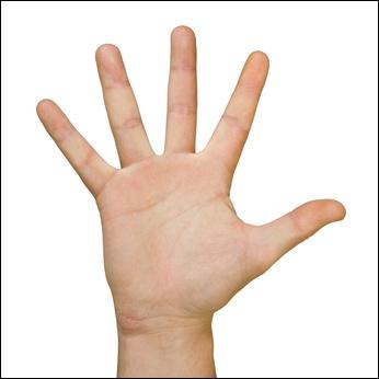 Comment se nomme le doigt le plus proche de l'auriculaire ?