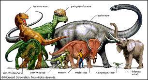 Parmi ces animaux , lesquels sont les descendants des dinosaures ?