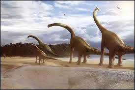Le brachiosaure est l'un des plus grands dinosaures connus . Il mesurait 10 mètres de haut . Selon vous que mangeait-il ?