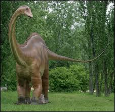 Lequel de ces reptiles ne fait pas partie de l'ordre des dinosauriens ?