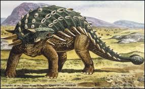 L'ankylosaure était un dinosaure haut de 2, 50 mètres qui vivait en Amérique du Nord . Il était couvert de plaques osseuses et sa queue se terminait par ...