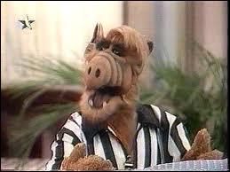 Quelle est la nourriture préférée d'Alf ?