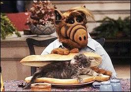 Combien d'estomacs Alf a-t-il ?