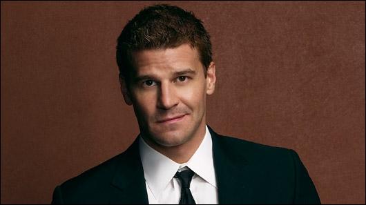Qui est cet acteur qui tient le rôle de Booth dans la série Bones ou encore de Angel ?