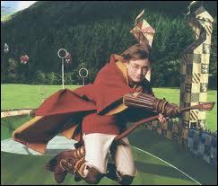 En rattrapant quel objet devant le professeur McGonagall, Harry entre-t-il dans l'équipe de Gryffondor ?