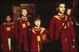 Quel match Harry manque-t-il en 1ère année à cause de son séjour à l'infirmerie après avoir arrêté Quirrell et Voldemort ?