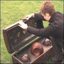 Qui apprend à Harry à jouer au quidditch ?