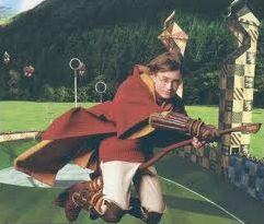 Poudlard, grand amateur de quidditch
