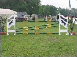 Quel saut d'obstacle n'existe pas ?