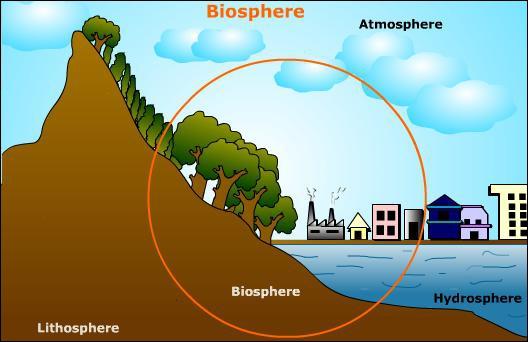 Qu'est-ce qui pourrait définir le mot  biosphère  ?