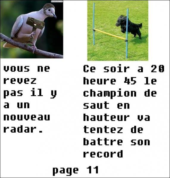 Le champion de saut en hauteur va tenter de battre son record, mais à quelle heure ?