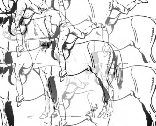 Une expression, cette fois :  /________/ sur ses /_________/ chevaux.