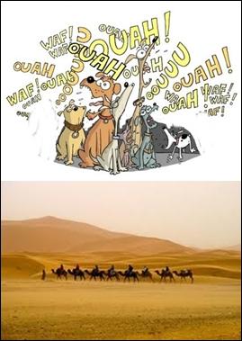 Ce proverbe est, quant à lui, arabe :  les /_____/ /_______/, /________/ passe.