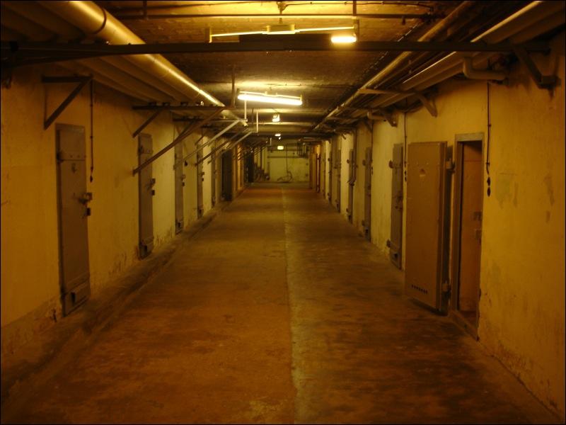 Dans quel pays plus de 350 détenus sont morts dans l'incendie de leur prison le 15 février ?