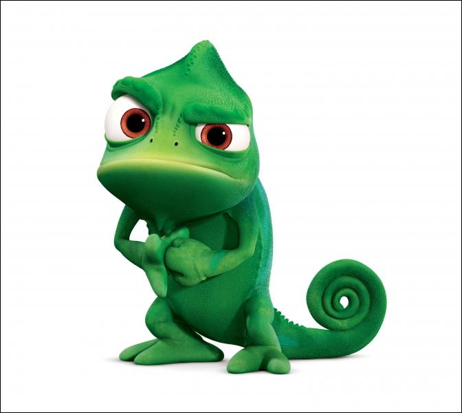 Ce caméléon va accompagner la princesse Raiponce dans son périple. Comment s'appelle-t-il ?