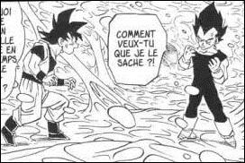 Où sont Végéta et Goku sur cette image ?