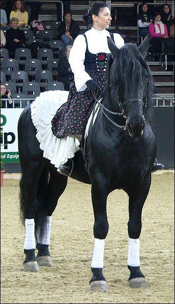 Cette race italienne est originaire du plateau des Murges dans les Pouilles. Il est utilisé pour le trait léger mais sa discipline reste le dressage. Sa robe est généralement noire, c'est ...