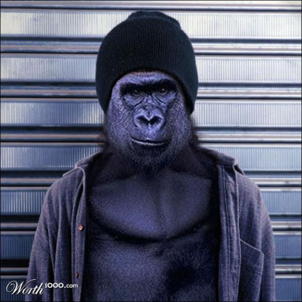 C'est un gorille des services spéciaux, un peu spécial !