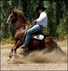 Comment s'appelle cette figure western ?