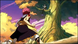 Contre qui Natsu se bat-il après Ultear ?