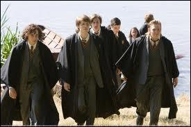 Quand Sirius était jeune et qu'il s'ennuyait, qu'espérait-il ?