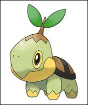 Quel est ce starter Pokémon ?