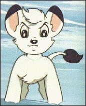 Il s'appelle Kimba et il est blanc !