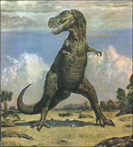 Dinosaures 20_h1yjl