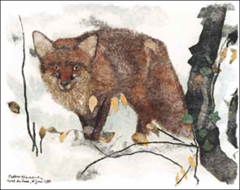 Où se situe l'action dans La Fable de La Fontaine  Le renard et le bouc  ?