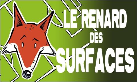 Que signifie le renard des surfaces ?