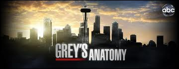 Où se déroule la série Grey's Anatomy ?
