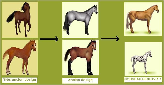 Comment étaient représentés les chevaux de race connemaras, avant ?
